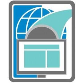 UTM SSL-VPN 250 User Licenses